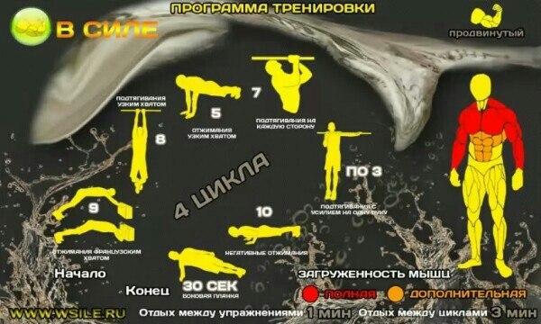 Программа тренировок бокс в домашних условиях