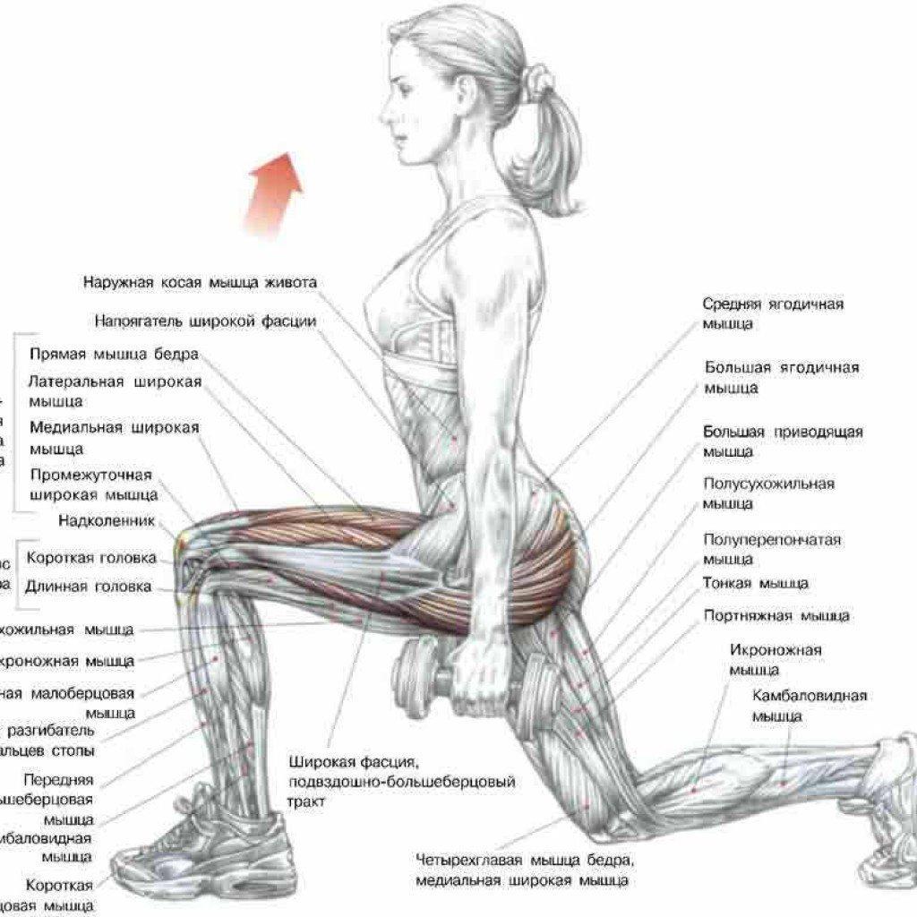Упражнения для передней поверхности бедра (четырехглавой) 21