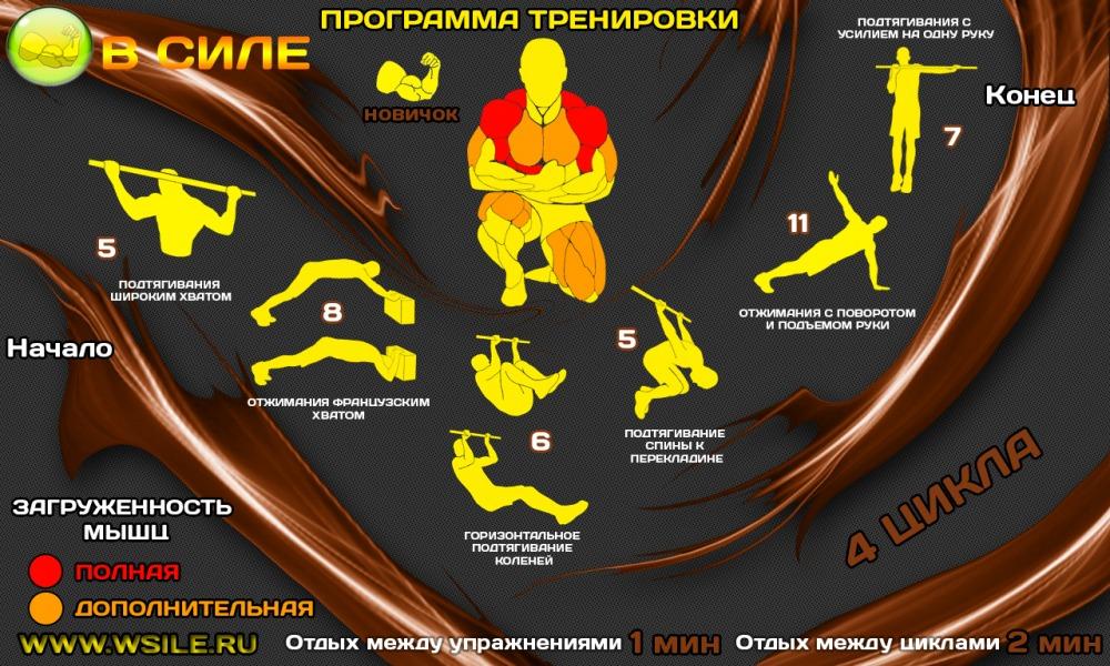Программы тренировок для