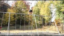 niroc handstand swing set