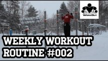 Weekly Workout Routine #002 - Beginner - Back-Biceps (from MadBarz.com)