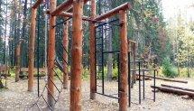 Спортивные комплексы и детские шведские стенки купить