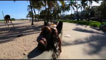 Best couples street workout!