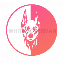 White_Doberman
