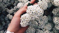 Фотографии Vika_Korunko