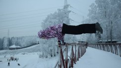 Фотографии Olesya