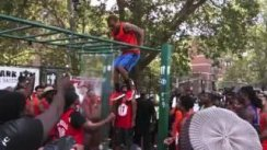 Pull Up Park Jam's Muscle Up Competition 2016