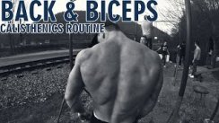 BACK + BICEPS CALISTHENICS (STREET WORKOUT) ROUTINE BODYWEIGHT