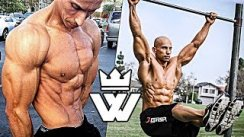 CALISTHENICS SHREDDED GUY - Vegan MONSTER (Frank Medrano)
