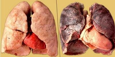Очередная правда о сигаретах