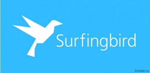 Мы на SurfingBird!