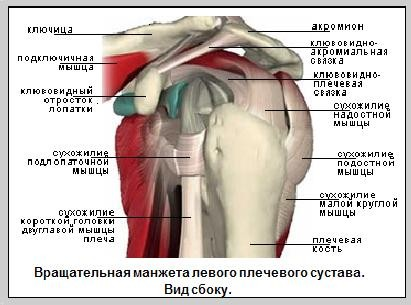 День 65. Самые частые травмы