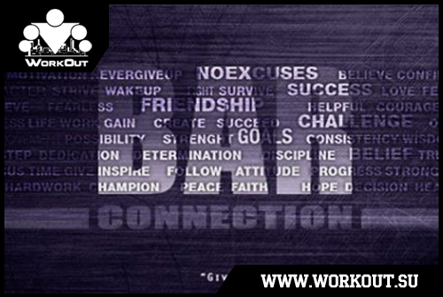 19 программ тренировок с собственным весом от команды Bar Сonnection
