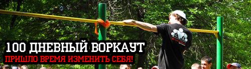 Цели программы 100 дневный воркаут 2015 (Весна)