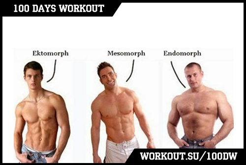 Day 38. Bodytypes: Ectomorph, Endomorph & Mezomorph
