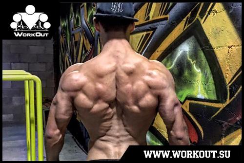 День 72. Тяжелая тренировка (груди, спины, рук, плеч и т.д.)