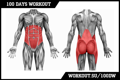 Day 45. Core muscles & ABS