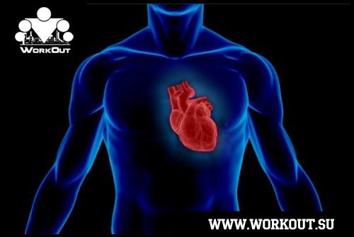 Кардиохирург о причинах сердечно-сосудистых заболеваний