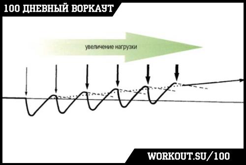 День 87. Основные принципы и методы физических тренировок