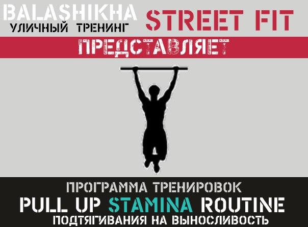 Программы подтягиваний на турнике от Балашихинского WorkOut сообщества