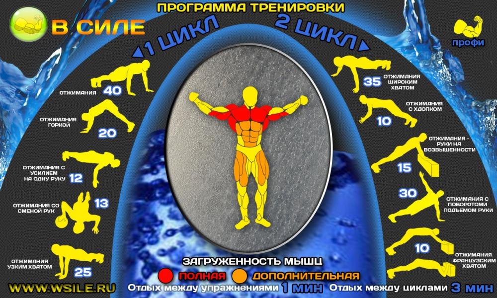 100 ДНЕВНЫЙ ВОРКАУТ(осень 2015)_Гусаров Алексей