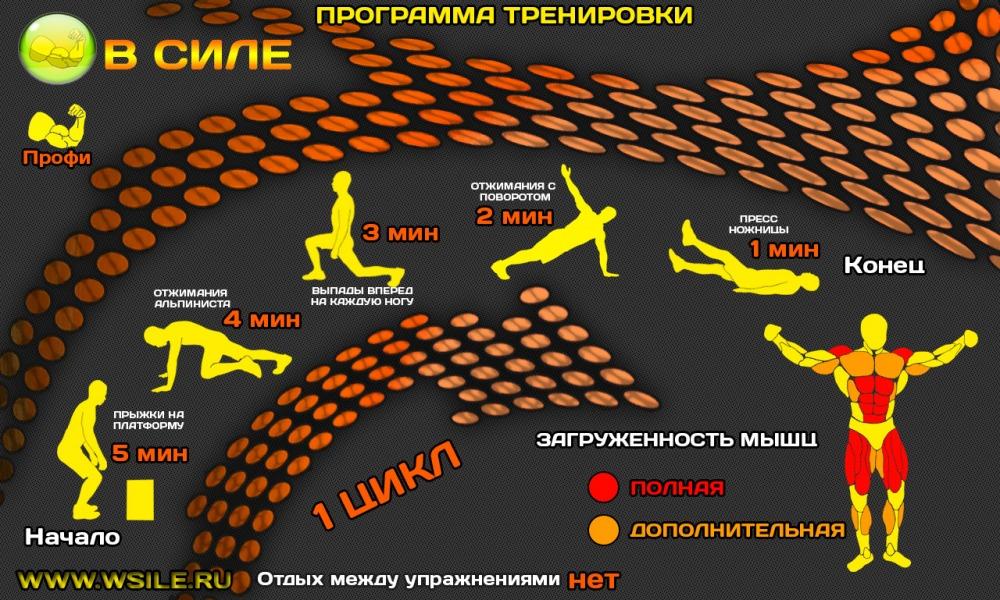 53 тренировочных программы для Начинающих, Продвинутых, Профессионалов и Мастеров от сайта WSILE.RU